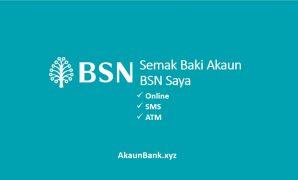 Semak Baki Akaun BSN