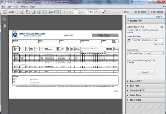 Laporan CCRIS Online
